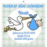 Geboorte Tegel jongen 9