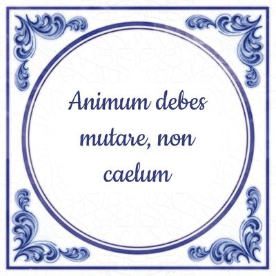 Animum debes mutare, non caelum